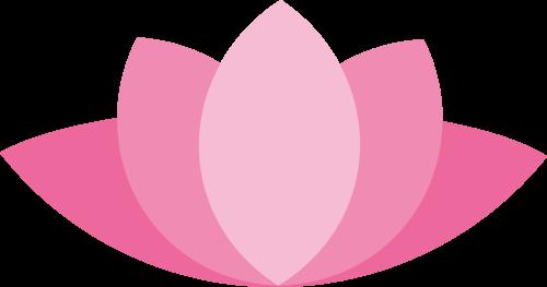 lotus_rosa